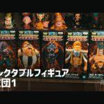 ワンピース ワールドコレクタブルフィギュア 百獣海賊団1 ONE PIECE