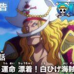 ONE PIECE 第962話予告「動く運命 漂着!白ひげ海賊団!」