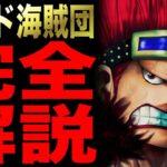 【ワンピース】キッド海賊団を全力解説!! 経歴まとめ【まとめ・解説】