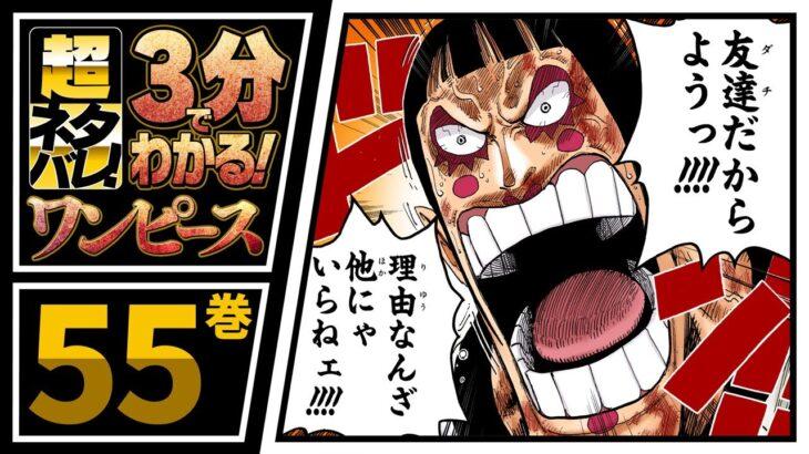 【3分で分かる!】ONE PIECE 55巻 完全ネタバレ超あらすじ!【友達(ダチ)だからようっ!!!!】