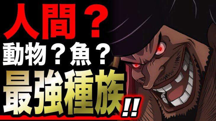 【衝撃】※黒ひげは人間じゃなかった。【ワンピース】