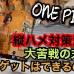 ワンピース ONE PIECE magazine FIGURE~夢の一枚#2~vol.1