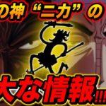 """太陽の神""""ニカ""""に関する国の重大な情報!!!【ワンピース考察】"""