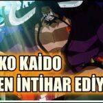 Kaido Nasıl Bir Yonko? Ölmek mi İstiyor? One Piece 986.Bölüm Anime İncelemesi l ワンピース