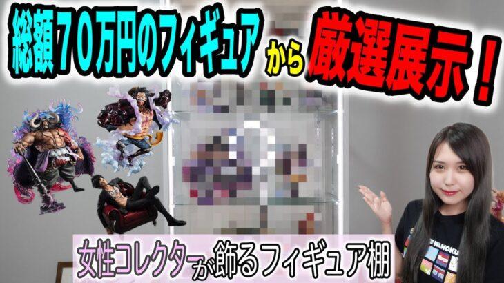 【ワンピース】女子コレクターのフィギュア棚見せます!【P.O.P編】