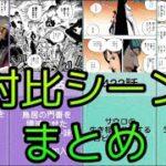 【ワンピース】対比シーンまとめvol.4【ONE PIECE】