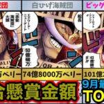 【ワンピース】9月最新、トータルバウンティランキング!伝説の海賊団含む【ONE PIECE】