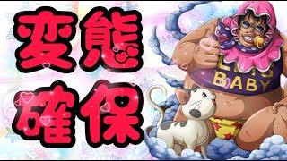 確保ぉおおおおおお!!【バウンティラッシュ】One piece Bounty Rush New Character is coming!