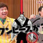【告知】ワンピースバラエティ 海賊王におれはなるTV DVD全4巻発売決定!!