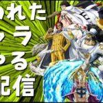 言われたキャラ使う生配信!!!【バウンティラッシュ】One piece Bounty Rush LIVE!!!!