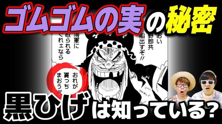 黒ひげはゴムゴムの実の重要性を知っている!? 悪魔の実の歴史にも詳しい…!?【 ワンピース 考察 】